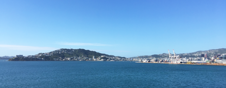 wellington-view